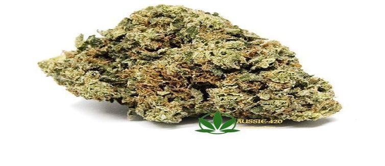 Aussie 420 | Australia Cannabis Shop / Buy Marijuana online